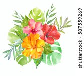 watercolor illustration of... | Shutterstock . vector #587559269