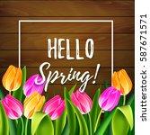 Hello Spring Tulips Flowers...