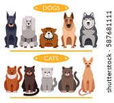 dogs and cats. cartoon vector... | Shutterstock .eps vector #587681111