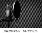 condenser microphone in... | Shutterstock . vector #587694071