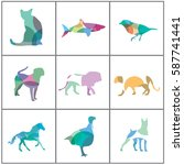 big set of colorful animal... | Shutterstock .eps vector #587741441