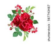 elegant floral bouquet  design... | Shutterstock . vector #587743487