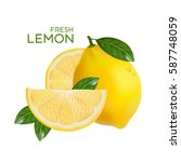 fresh lemon fruit vector | Shutterstock .eps vector #587748059