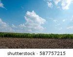 field  nature. rural...   Shutterstock . vector #587757215
