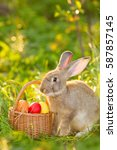 Small photo of Easter bunny with a basket of eggs on spring flowers background. Card of cute hare outdoor