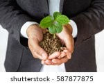 businessman holding sprout tree ... | Shutterstock . vector #587877875