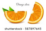 orange slices. vector