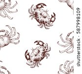 vector seafood seamless pattern ... | Shutterstock .eps vector #587998109