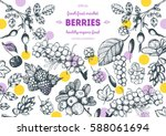 berries hand drawn vector... | Shutterstock .eps vector #588061694