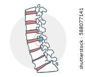 herniated intervertebral disc... | Shutterstock .eps vector #588077141