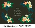 tropical flowers. vector hand...