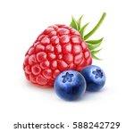 isolated berries. one fresh... | Shutterstock . vector #588242729