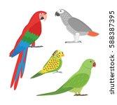 cartoon tropical parrot wild... | Shutterstock .eps vector #588387395