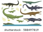 cartoon green crocodile danger... | Shutterstock .eps vector #588497819