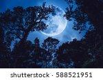 Super Moon Or Big Moon....