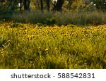 spring floral background with...   Shutterstock . vector #588542831