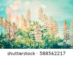 floral nature background with...   Shutterstock . vector #588562217