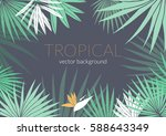 tropical leafs composition... | Shutterstock .eps vector #588643349