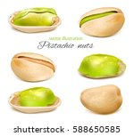 pistachio. whole nuts and... | Shutterstock .eps vector #588650585