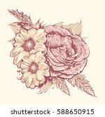 vector flowers. rose and... | Shutterstock .eps vector #588650915