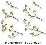 color pattern of branches with...   Shutterstock .eps vector #588658127