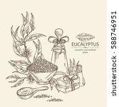 background with eucalyptus ... | Shutterstock .eps vector #588746951