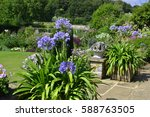 colourful terrace with... | Shutterstock . vector #588763505