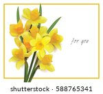 Bouquet Of Yellow Daffodils On...