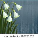 floral background. spring... | Shutterstock .eps vector #588771395
