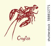 crayfish  with inscription ... | Shutterstock .eps vector #588812771