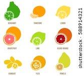 citrus fruits vector flat set....   Shutterstock .eps vector #588914321