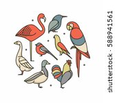birds vector outline... | Shutterstock .eps vector #588941561