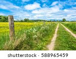 Rural Road And Field With...