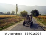 bulgaria  couple on horse cart... | Shutterstock . vector #589016039