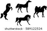 arabian horse silhouette   Shutterstock .eps vector #589122524