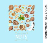 isolated square of nuts and... | Shutterstock .eps vector #589170221