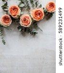 orange roses and decorative... | Shutterstock . vector #589231499
