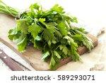 organic italian parsley closeup ... | Shutterstock . vector #589293071