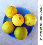 lemon | Shutterstock . vector #589320014