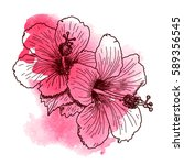 Stock vector a bouquet of tropical hibiscus flowers hand drawn sketch texture background watercolor effect 589356545