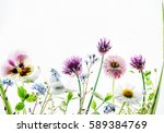 summer flowers | Shutterstock . vector #589384769