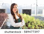 young beautiful chinese woman... | Shutterstock . vector #589477397