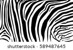 background stripe animals... | Shutterstock .eps vector #589487645
