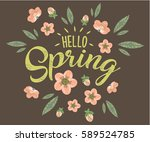 hello spring hand sketched... | Shutterstock .eps vector #589524785