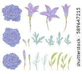 bluebell  geranium flowers ... | Shutterstock .eps vector #589647215