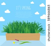 fresh green spring grass... | Shutterstock .eps vector #589666865
