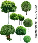Green Trees Isolated On White...