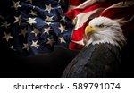 american bald eagle   symbol of ... | Shutterstock . vector #589791074