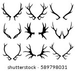 Antlers  Deer And Reindeer...