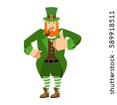 Leprechaun Winks. Dwarf With...
